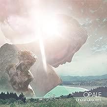 Best opale l incandescent Reviews