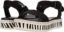 Black/Zebra