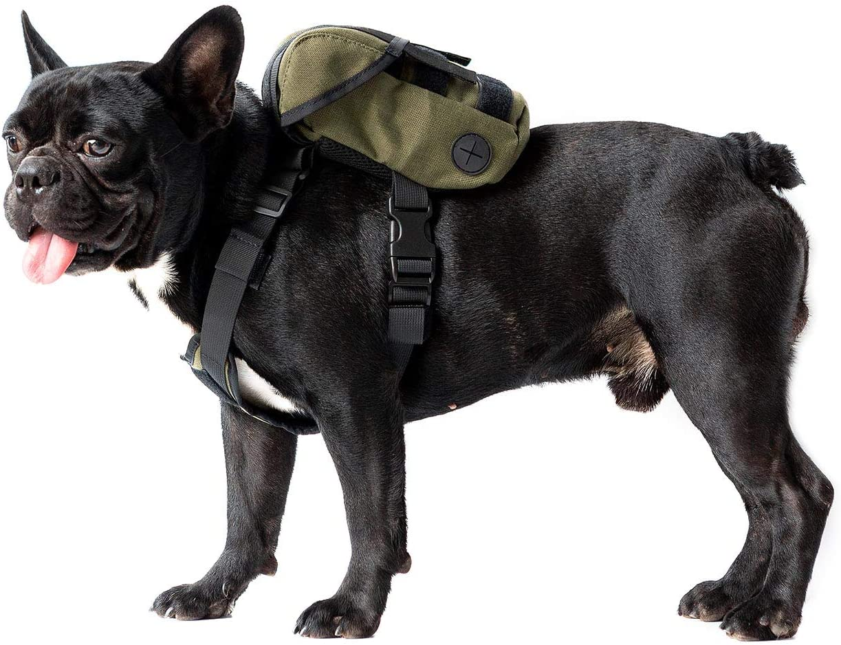 OneTigris Dog Pack K9 Translated Ranking TOP2 Backpack Durable Small wi Medium