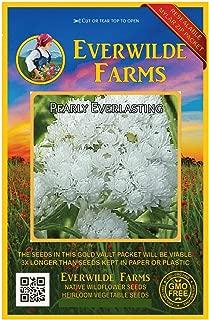 Everwilde Farms - 1250 Pearly Everlasting Native Wildflower Seeds - Gold Vault Jumbo Seed Packet