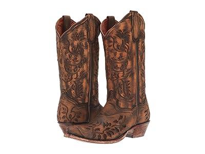Dan Post Irresistible (Brown) Cowboy Boots