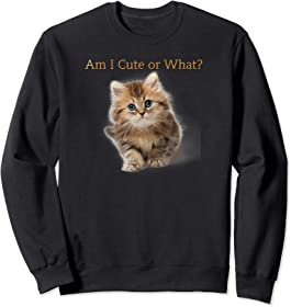 Cute Kitten Sweatshirt