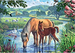 Painting By Numbers Kits Romantic Beautiful Picture Diy Horse Is Drinking Water Pattern Oil Picture Drawing Home Wall Decor Art Gift Canvas Children,30Cmx40Cm Marco