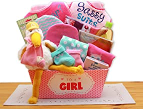 A Special Delivery New Baby Girl Gift Basket, New Baby Gift for Girl, Baby Shower Gift.