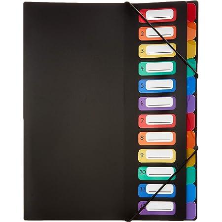 Viquel Rainbow Class - Trieur accordéon 12 compartiments en plastique - Pochette extensible pour classer et transporter des documents - Rangement papier format A4