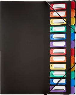 Viquel Rainbow Class - Trieur accordéon 12 compartiments en plastique - Pochette extensible pour classer et transporter de...