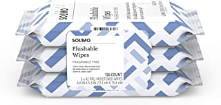 Amazon Brand - Solimo Flushable Adult Toilet Wipes, Fragrance Free, 126 Count