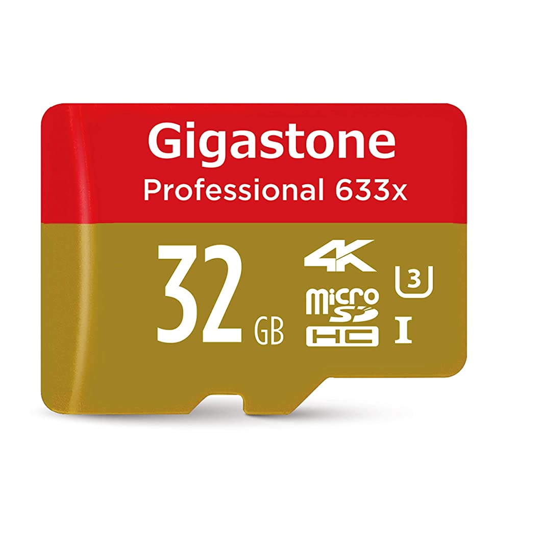 Gigastone 32GB Micro SD Card, Professional, 4K Ultra HD, Micro SDHC UHS-I U3, High Speed up to 95MB/s, with MicroSD to SD Adapter, Android Camera Canon Dashcam DJI Drone GoPro Nikon Nintendo Samsung