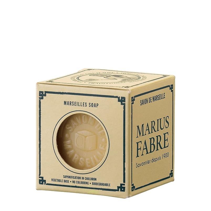 レンズ過敏なゴールサボンドマルセイユ ネイチャー パーム (100g)