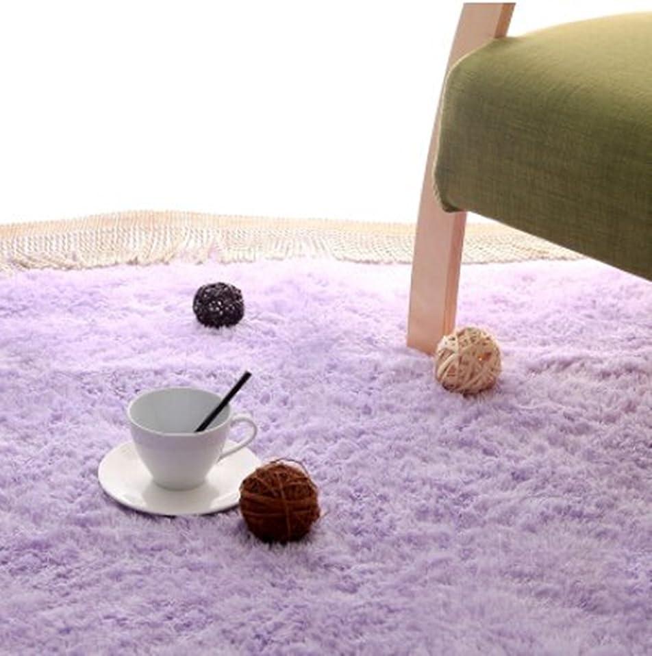 主婦休憩する耐久長方形 四角 シャギー ラグ エクセレント ムーティー マット ラグ マイクロファイバー 滑り止め付き 丸洗い 折り畳み 可能 ホットカーペットカバー 床暖房 対応 やわらか 絨毯 防音 低反発 高反発 (160*230, 紫色)