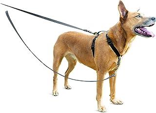 Hundeleinen Für Ihren Liebling Auf Kaufen