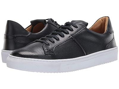 Massimo Matteo Perf Sneaker (Navy) Men