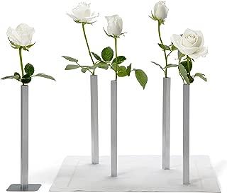 Peleg Design DCI Magnetic Flower Vase Set, Unique and Modern Aluminum Vases for Home Garden Decor, Vase for Centerpieces, Silver, Set of 5