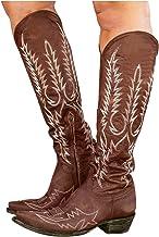 Dasongff Hoge dameslaarzen met hak, lange laarzen voor vrouwen, vintage, westernlaarzen, waterdicht, cowboylaarzen, klassi...