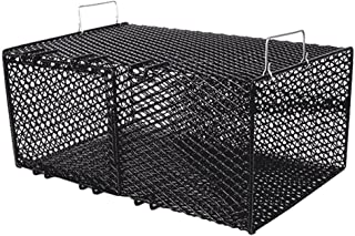 Frabill Rectangular Pinfish Trap | Vinyl Dipped Steel Mesh Trap Specifically Designed for Pinfish | Freshwater and Saltwat...
