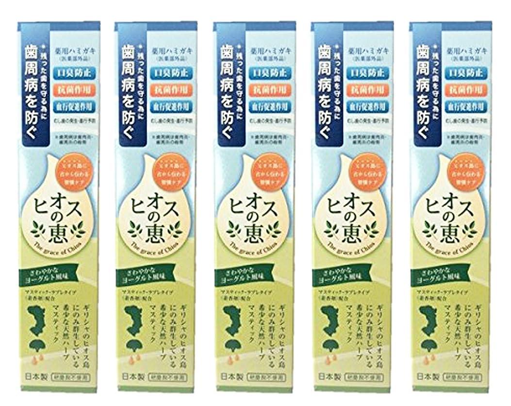 レイアオーディション広いヒオスの恵 60g 【まとめ買い1個60g×5個】薬用ハミガキ 日本製
