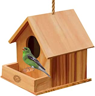 SunGrow DIY Paintable Bird House with Porch, Attracts Small Birds, Craft for Kids, Home Decor, Beautiful Gift for All Age...