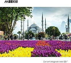 En frente de Hagia Sophia Kit de pintura digital para principiantes Regalos únicos para parejas y amigos 40x50cm Sin marco