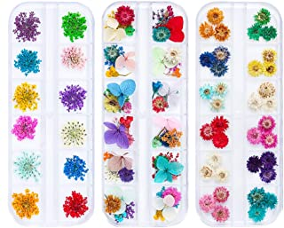 iFancer 108 Pcs Nail Dried Flowers 48 Colors 3D Nail Art Real Flowers Nature Dry Petals Leaves Decor for Nail Art Design Manicure Decoration