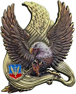 eagle scout challenge coin