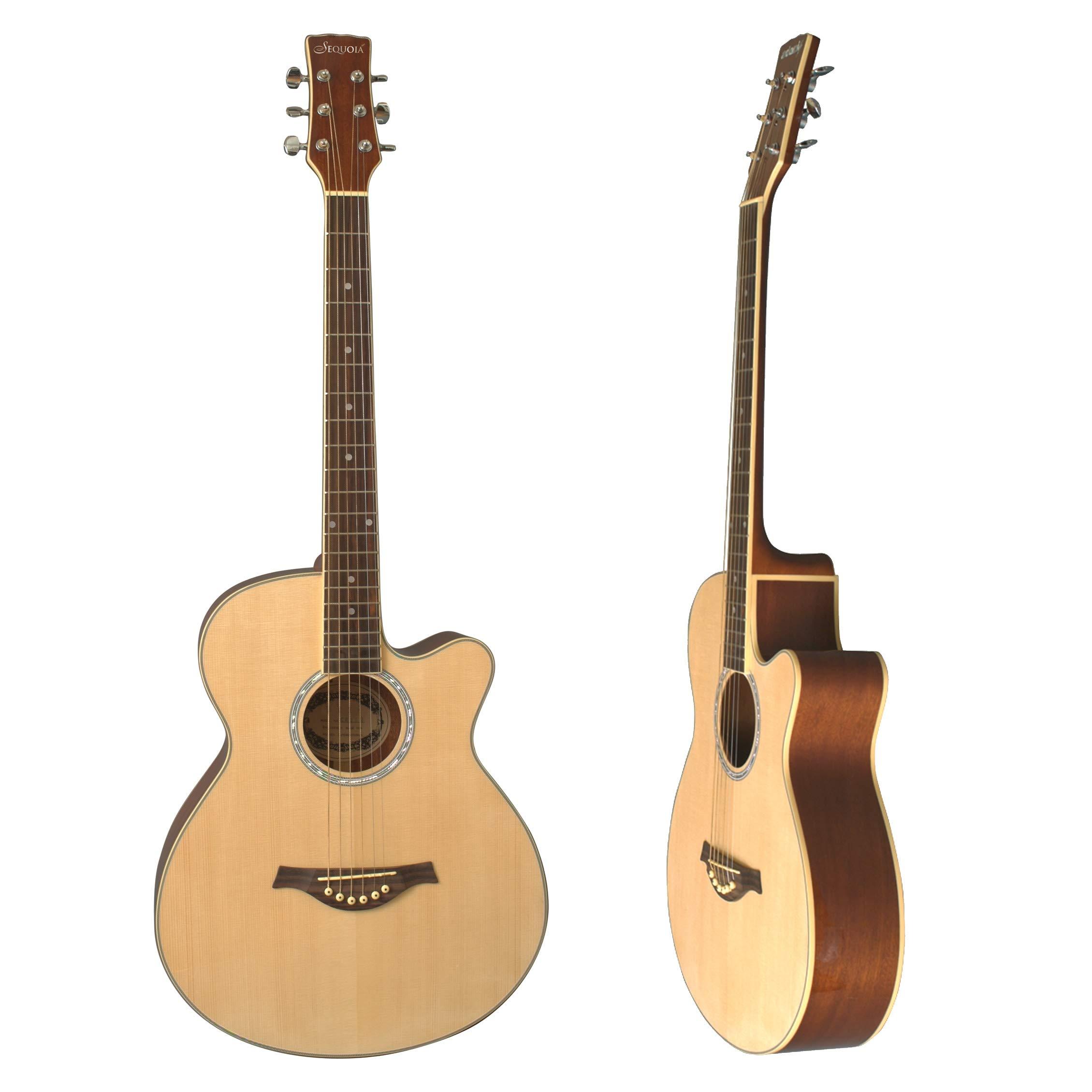 eMedia aprender a tocar la guitarra Pack: Amazon.es: Instrumentos musicales