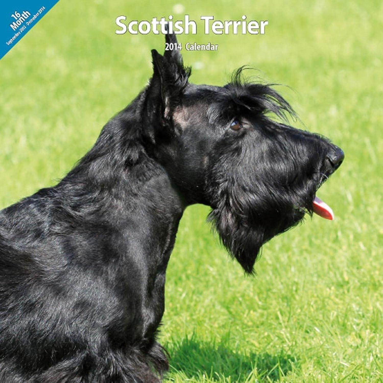 Scottish Terrier 2014 Wall Calendar