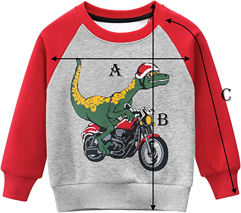 Hans Angel Boys Winter Fleece Cotton Casual Crewneck Long Sleeve Top Sweatshirt Warm Clothes for Kids 4-7T