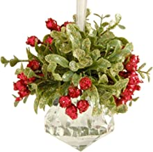 Ganz Kissing Krystal Acrylic Christmas Mistletoe Ornament with Hanger