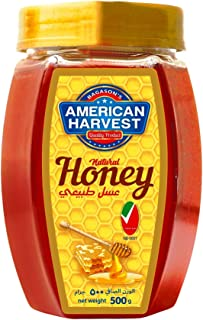 American Harvest Natural Honey Hexa Jar, 500 gm