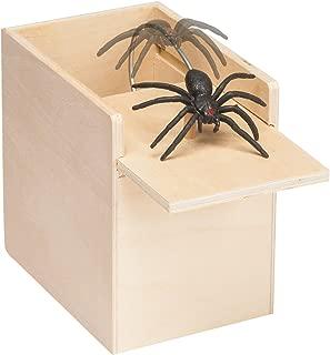 The Paragon Spider Surprise - Scare Box, Hilarious Practical Joke Money Box