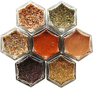 CARNIVORE | Seven Organic Meat Rubs & Seasonings in Gneiss Spice Small Magnetic Jars for Fridge | Boxed Gift Set (7 Jars, Silver Lids)
