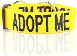 ADOPT ME Yellow Color Coded L-XXL Semi-Choke Dog Collar (Needs A Home) Donate To Your Local Charity