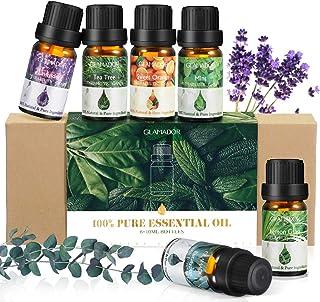 Ätherisches Öle, GLAMADOR Ätherische Öle Set, Essential Oil für Aromatherapie, 100% Rein Öle für Aroma Diffuser, Lavendel, Zitronengras, Teebaum, Minze, Süßorange, Eukalyptus, Geschenkset,6x10ml