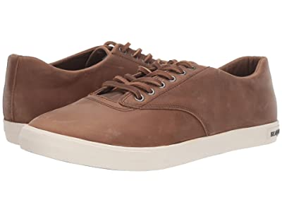 SeaVees Hermosa Sneaker Wintertide (Elmwood) Men
