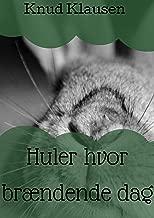 Huler hvor brændende dag (Danish Edition)