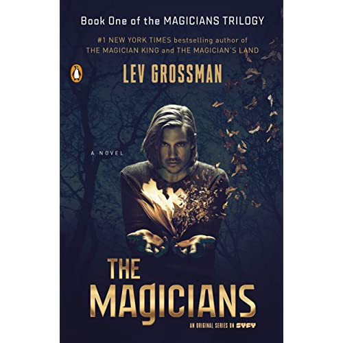 The Magicians Father (Wild Edged Magic)