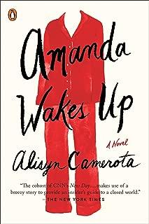 Amanda Wakes Up: A Novel