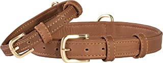 Friends Forever Leather Dog Collars for Large Dogs Small and Medium Collar Leather Collar