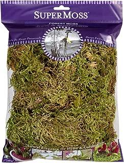SuperMoss 21576 Forest Moss Dried 4oz