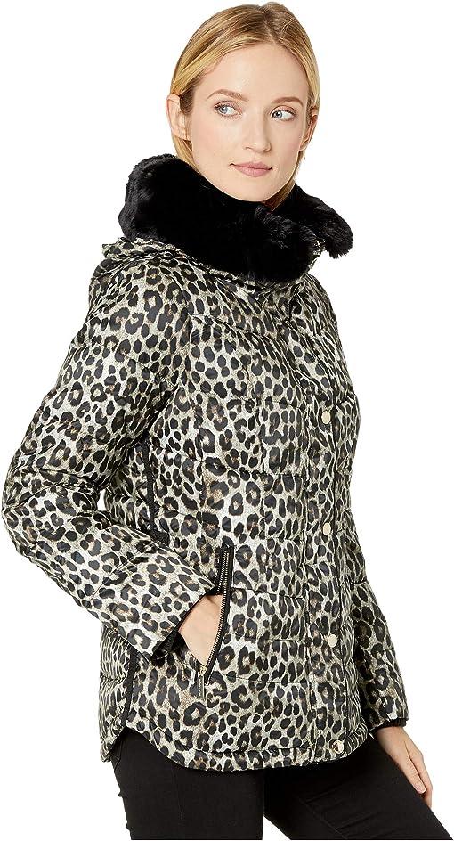 Dark Camel Leopard