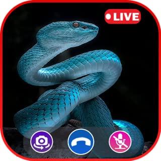 Call Video Snake Simulator - Prank Call Apps