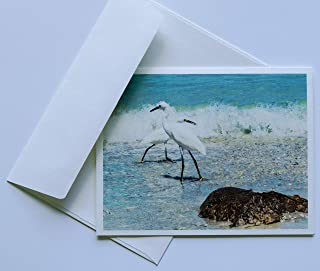 Bird Note Cards Original Elegant Photographic Textured White Blank 4.25