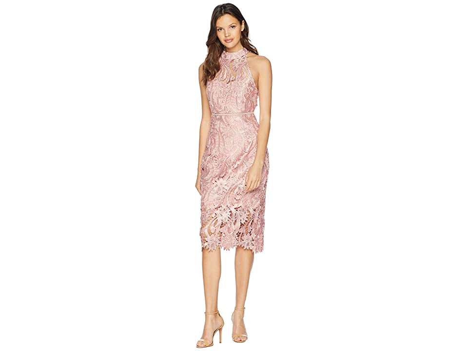 Bardot Isa Lace Dress (Vintage Rose) Women