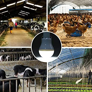 Solar Light Bulb 130LM Solar Lamp Portable LED Light Solar Panel Powered Rechargeable Lights for Home Shed Barn Indoo...