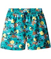 Kenzo Kids - Kenzo Tropical Trunks (Big Kids)