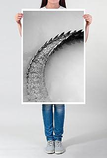 Best for Home Artprints – Photo Artistique – Queue d'un codiles d'eau salée Noir et Blanc – Impression Photographique d'un...