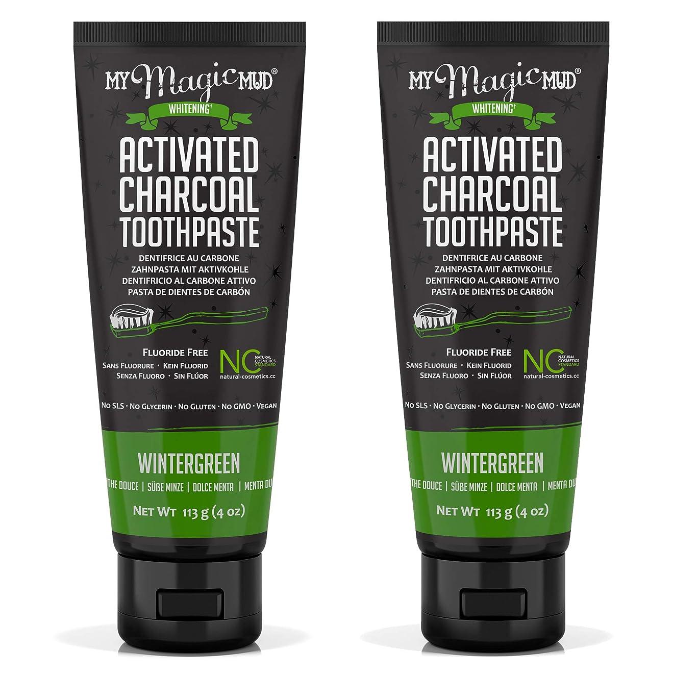 証書地中海代替My Magic Mud Activated Charcoal Toothpaste (Fluoride-Free) - Wintergreen 113g/4oz並行輸入品