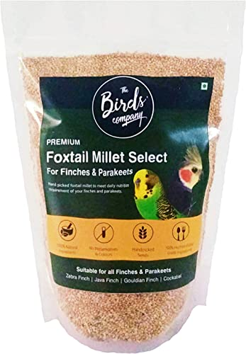 The Birds Company Foxtail Millet (Kangni), with Spirulina & Cuttlefish Bone, Bird Food for Canary, Finches, Budgies, ...