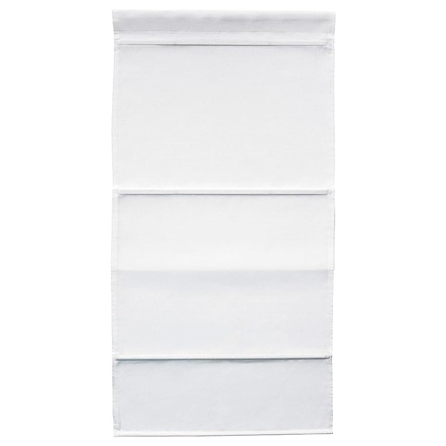 究極の家事舌なIKEA RINGBLOMMA 80258067 ローマンブラインド 80x160cm ホワイト
