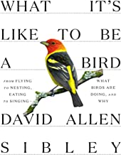 What It's Like to Be a Bird: From Flying to Nesting, Eating to Singing–What..